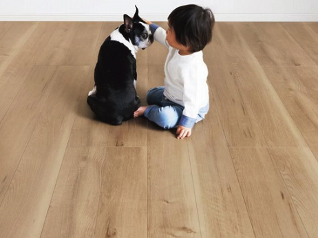 床の上に子供とペットがいる画像